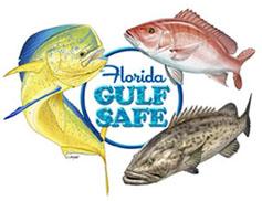Florida Gulf Safe