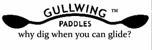 Gullwing Paddles Final