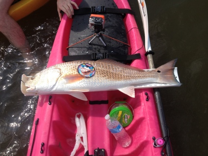 75. Redfish Measure 1